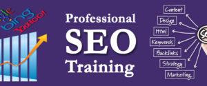 Seo training in jalandhar